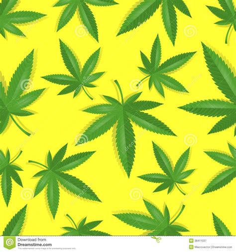 pot leaf template seamless marijuana cannabis pattern royalty free stock