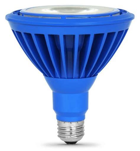 U Shaped Fluorescent Bulbs by Led Par38 Blue Flood Light Bulbs Buylightfixtures Com