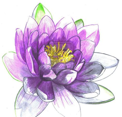 lily pad tattoo images for gt water flowers tattoos