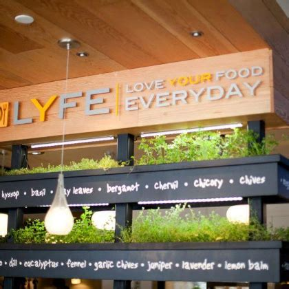Lyfe Kitchen Valencia by Lyfe Kitchen Great Management Glassdoor Ca