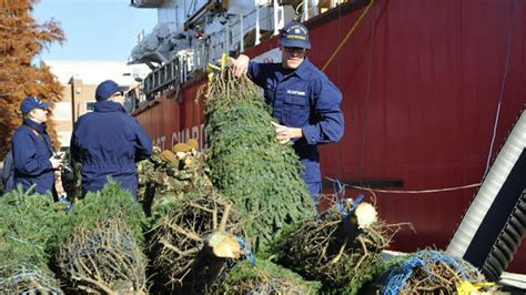 christmas tree delivery chicago coast guard cutter reenacts chicago tree tradition