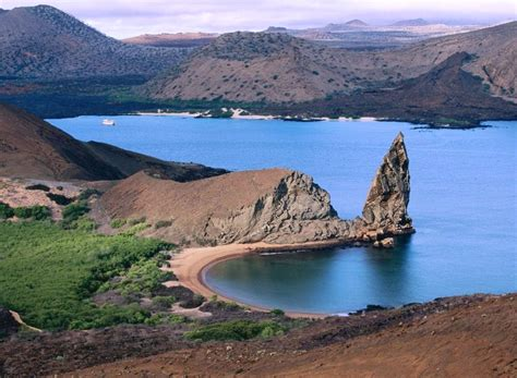 Animals Plants Rainforest Galapagos Islands Facts