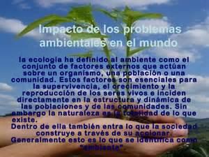 informacion de los problemas ambientales impacto de los problemas ambientales en el mundo