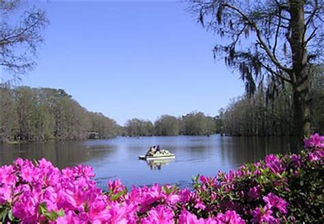 paddle boats greenfield lake best 25 wilmington north carolina ideas on pinterest