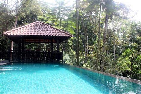 Guepedia Gerimis Di Tepi Jalan percutian mewah dalam hutan di gerimis senja villa