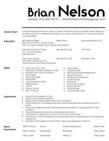 Government Consultant Sle Resume by Sales Consulting Resume Sales Sales Lewesmr