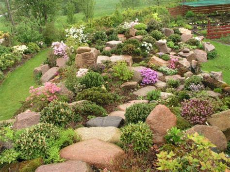 Rock Gardens Ideas Rockery Plants Rock Garden Ideas Rock Gardening Gardens Front Yards And Plants