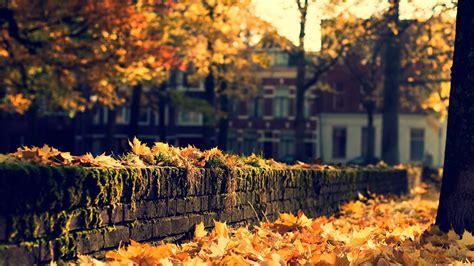 fall desktop wallpapers hd pixelstalknet