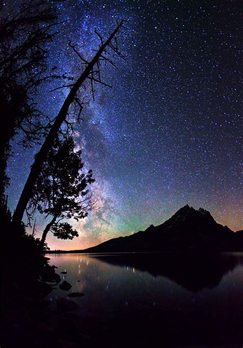 cool tree stars a galaxy not so far away salt lake city photographer captures spectacular images of our own