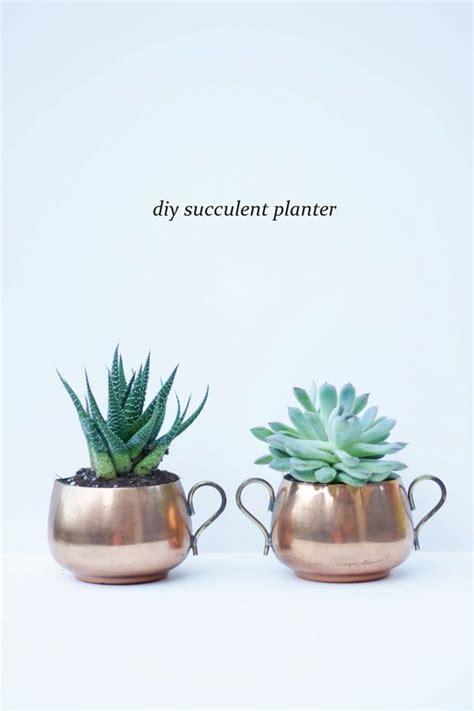 cute succulent pots 39 best images about urban homestead nest on pinterest