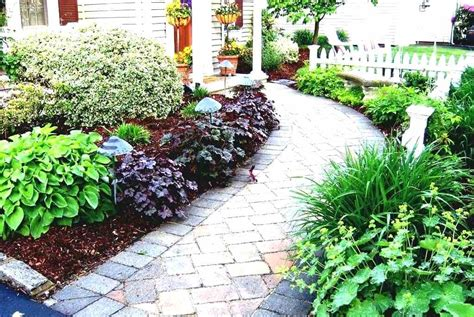 25 best ideas about evergreen front yard landscaping shrubs classic front yard landscape