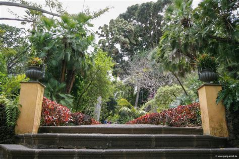 botanischer garten de la der botanische garten de la bilder und mehr