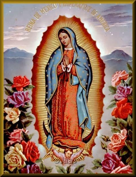 imagenes de la virgen de guadalupe navideñas 174 gifs y fondos paz enla tormenta 174 virgen de guadalupe