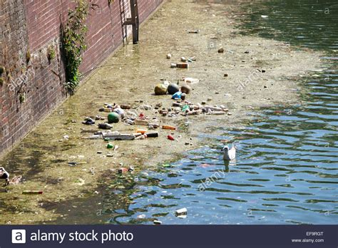 thames river water quality pollution in the river thames london uk stock photo