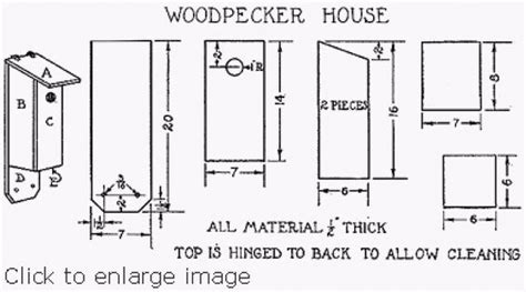 woodpecker house plan birdhouse and feeder plans