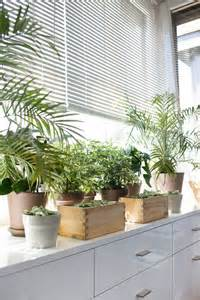 Window Sill Plants Decor Window Sill Decoration From Plants Room Decorating Ideas Home Decorating Ideas