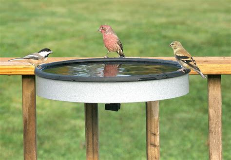 duncraft com heated deck mount bird bath