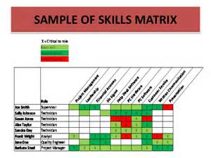 training needs analysis skills auditing and training roi