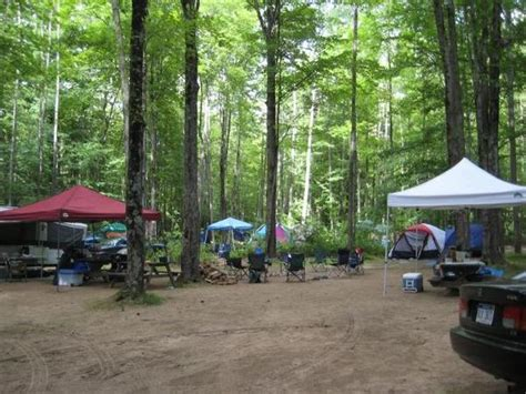 Cabins In Cadillac Mi by Rv Park Cground For Sale In Near Cadillac Mi Pine