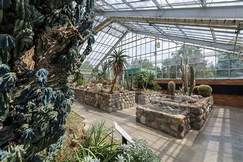 Matthaei Botanical Gardens Conservatory Arid House Matthaei Botanical Gardens And Nichols Arboretum