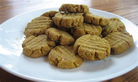 canned pumpkin for dogs 7 ways to add fiber to your s diet the pets central