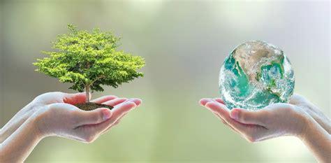 imagenes educativas sobre medio ambiente d 237 a mundial del medio ambiente