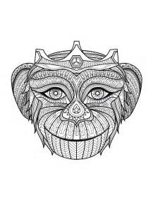 animals coloring pages for adults coloring