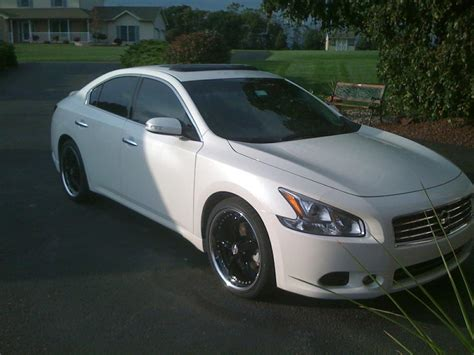 white nissan maxima 2003 nissan maxima price modifications pictures moibibiki
