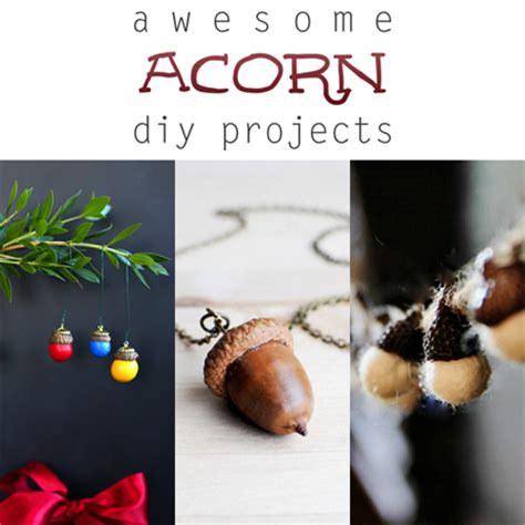 awesome acorn diy projects the cottage market