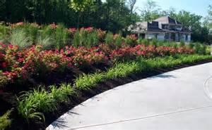 Landscaping Ideas Knockout Roses Landscape Designs Using Knockout Roses Pdf