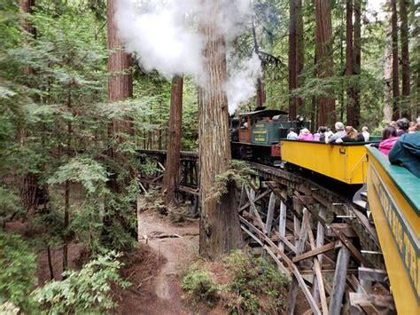 roaring camp railroads santa cruz