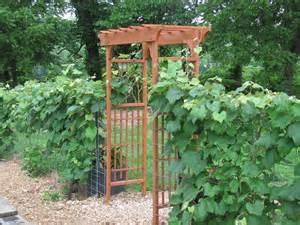 Garden Arbor Plans Woodworking Diy Garden Arbors Plans Pdf Free Diy