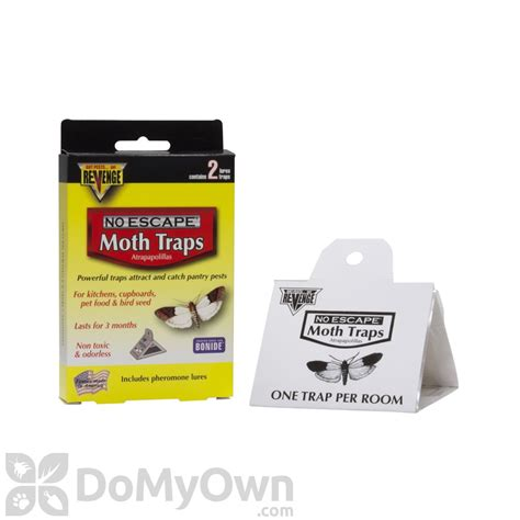 The Pantry Pest Trap by Pantry Pest Trap Meal Moth Flour Moth Raisin
