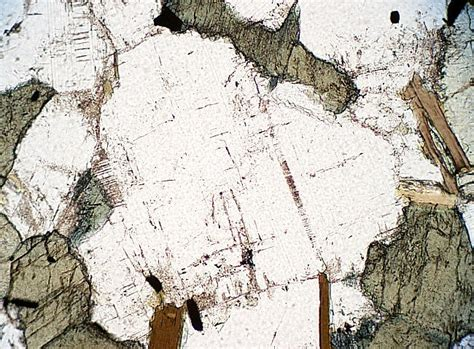 plagioclase feldspar thin section igneous minerals