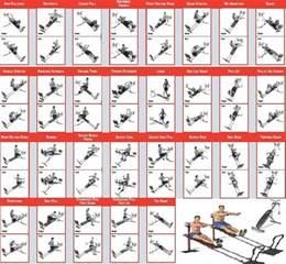 14 176 partie exercice de musculation avec le bullworker