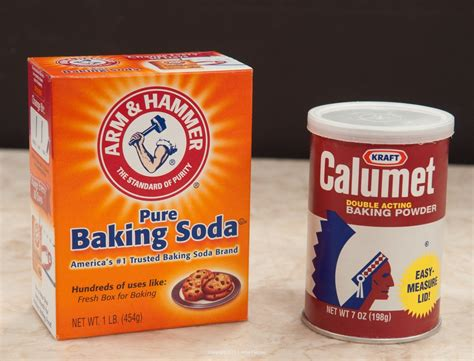 baking sofa baking powder vs baking soda when and where to use which
