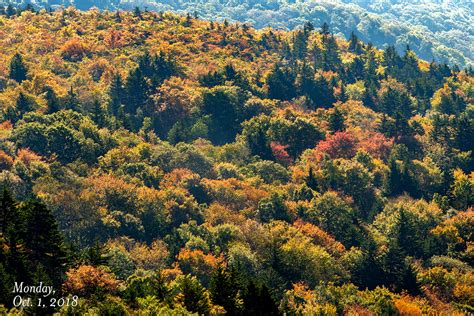 fall color report fall color report wataugaonline