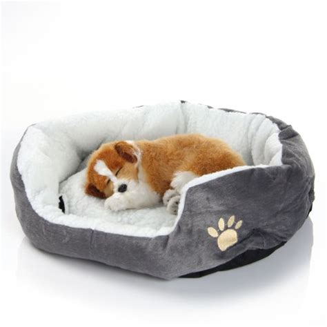 puppy has separation anxiety puppy separation anxiety helping your puppy be alone infobarrel