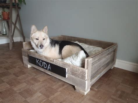 dog bed made out of pallets dog bed made from pallets lauren zutt do it yourself
