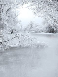 winter creek curve snow trees water reflections mysterious mist of nature winter on snow winter snow and winter