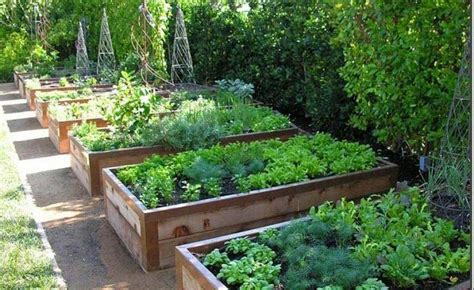 Vegetable Gardening With Raised Beds Quiet Corner Vegetable Raised Garden Beds
