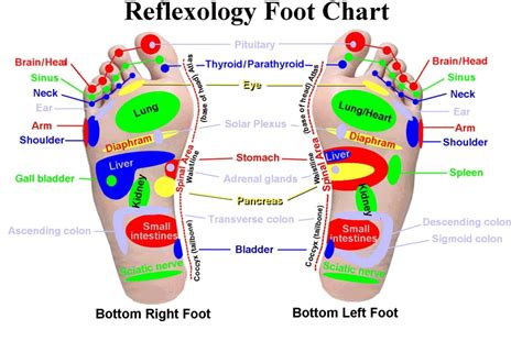 Places Near Me To Foot Detox by Why Should I Place The Pad In The Center Of The Foot