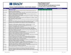 brady visual checklist june 28