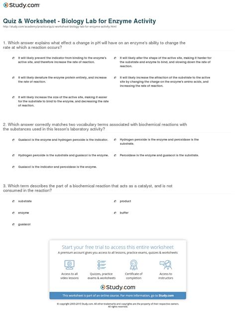 lab bench enzyme catalysis worksheet enzyme worksheet caytailoc free printables