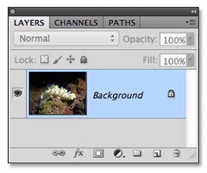 1 photoshop tutorial backscatter background