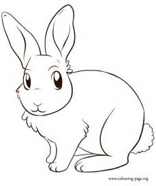 rabbit coloring pages free coloring pages of baby rabbit