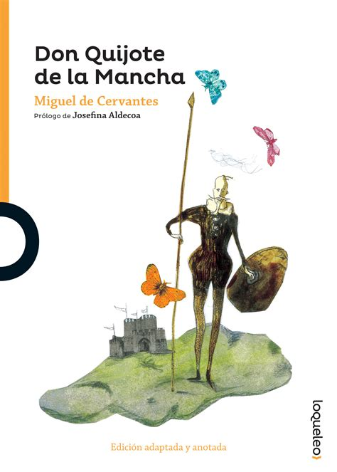 don quijote de la don quijote de la mancha