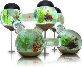 Light Bulb Hanging Vase Confuse Your Pet Fish With The Labyrinth Aquarium