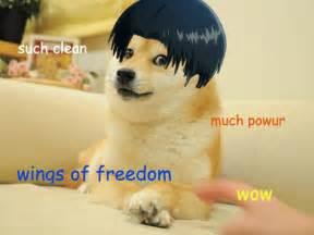 Best Doge Memes - the best of the doge meme