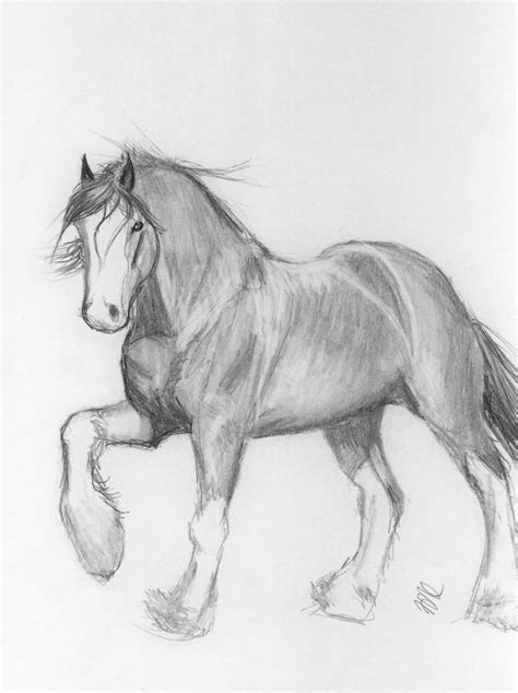 clydesdale by redworc on deviantart